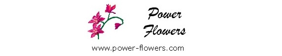 Toronto Wedding Florist is a presentation of wedding flower arrangements by Power Flowers florist in Toronto
